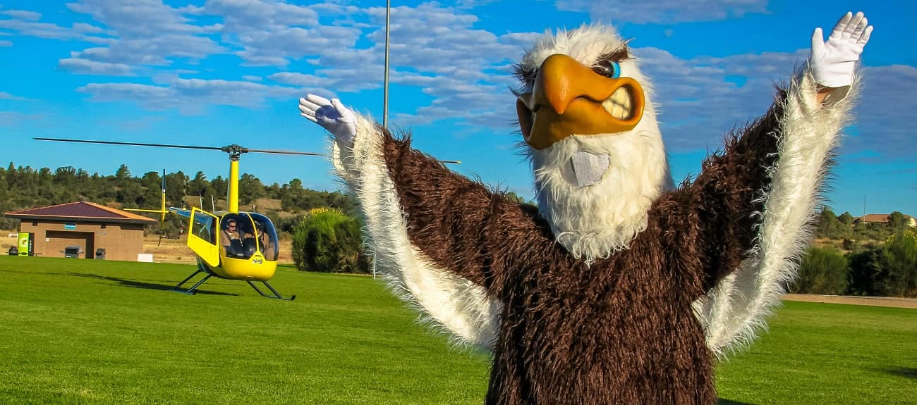 Ernie eagle with helicopter