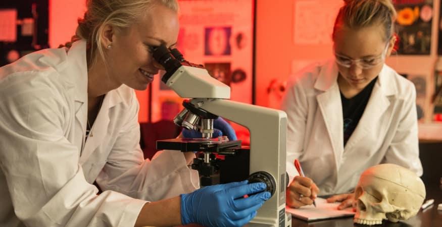 Two students look through microscope at specimen and analyze data in a laboratory